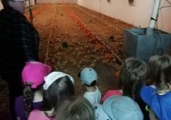 Za kuřátky do AGRI-M, spol. s r.o. Mistřice 27. 4. 2018